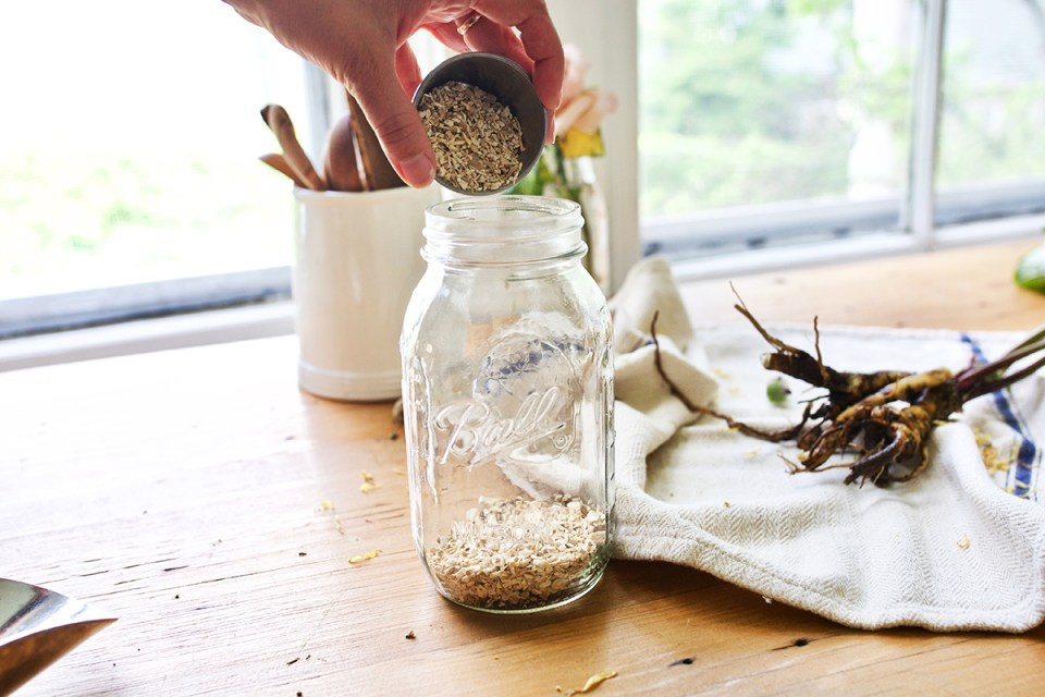 How to Make a DIY Autumn Root Tonic | Herbal Academy | When autumn shows its signs, it may be time to incorporate herbal roots into your diet in the form of an autumn root tonic to support your vitality.