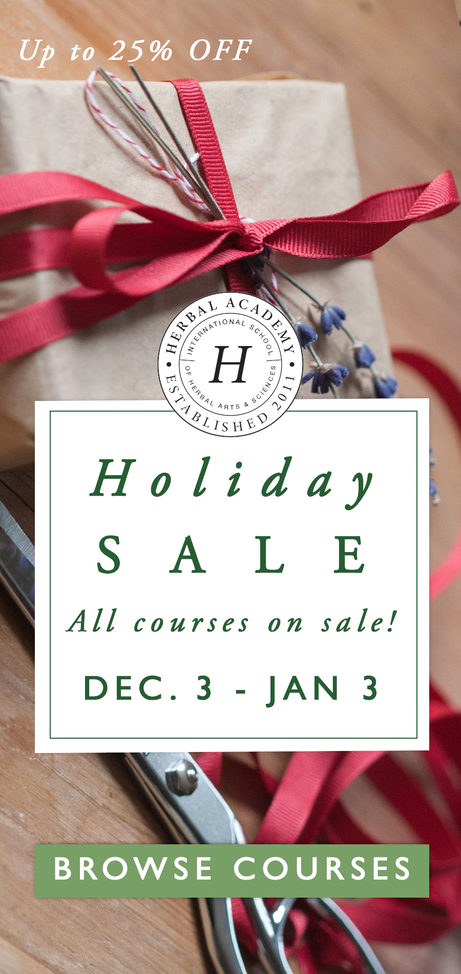 All courses on sale now - up to 25% off!