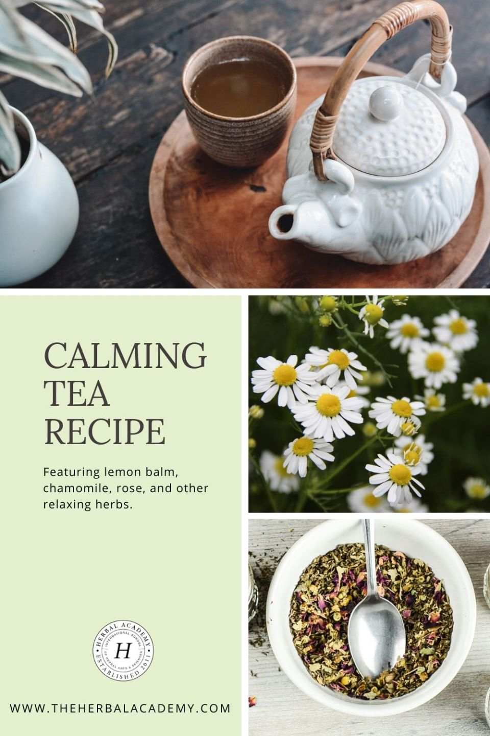 Calming Tea Recipe & Natural Stress Management (With Video!) | The Herbal Academy | Simple lifestyle practices to go-to formulas, like our Calming Tea Recipe, can help us better manage and cope with stress naturally.