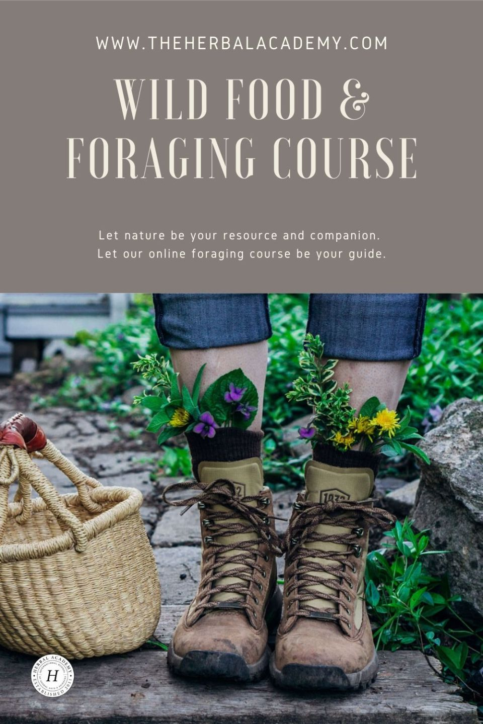 Introducing Our NEW Foraging Class! | Herbal Academy | To make the most of sweet summertime, we've got just the challenge to keep you engaged and exploring all season long: a foraging class!