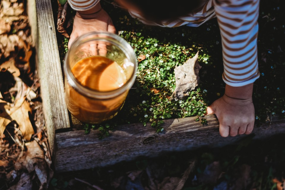 Online Nature Kids Camp Herbalism for Kids by the Herbal Academy