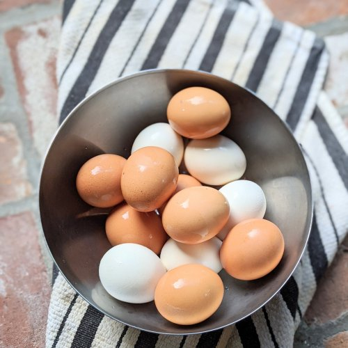 easy hardboiled eggs recipe easy peel boiled eggs clean shells easy recipe