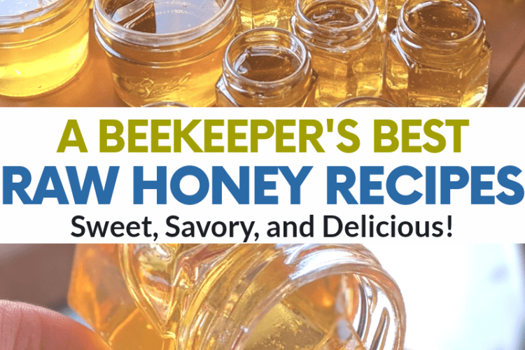 best raw honey recipes from a beekeeper honey hive
