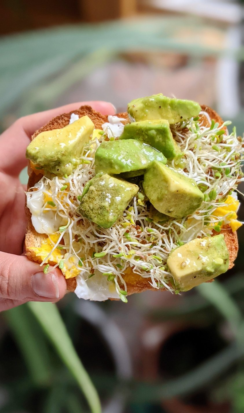 avocado salad breakfast sandwich recipe with smashed eggs and sprouts on toast with fresh marinated avocado salad for beunch recipes fancy vegan vegetarian gluten free
