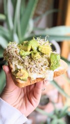 smashed avocado and egg breakfast sandwich recipe vegetarian brunch sandwich recipes healthy meatless brunch ideas recipes for plant based breakfasts