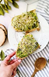 avocado toast with sprout recipe vegan gluten free breakfast ideas with avocado and sprouts together. Eat sprouts for breakfast with this healthy and light avocado toast crunchy and delicious.