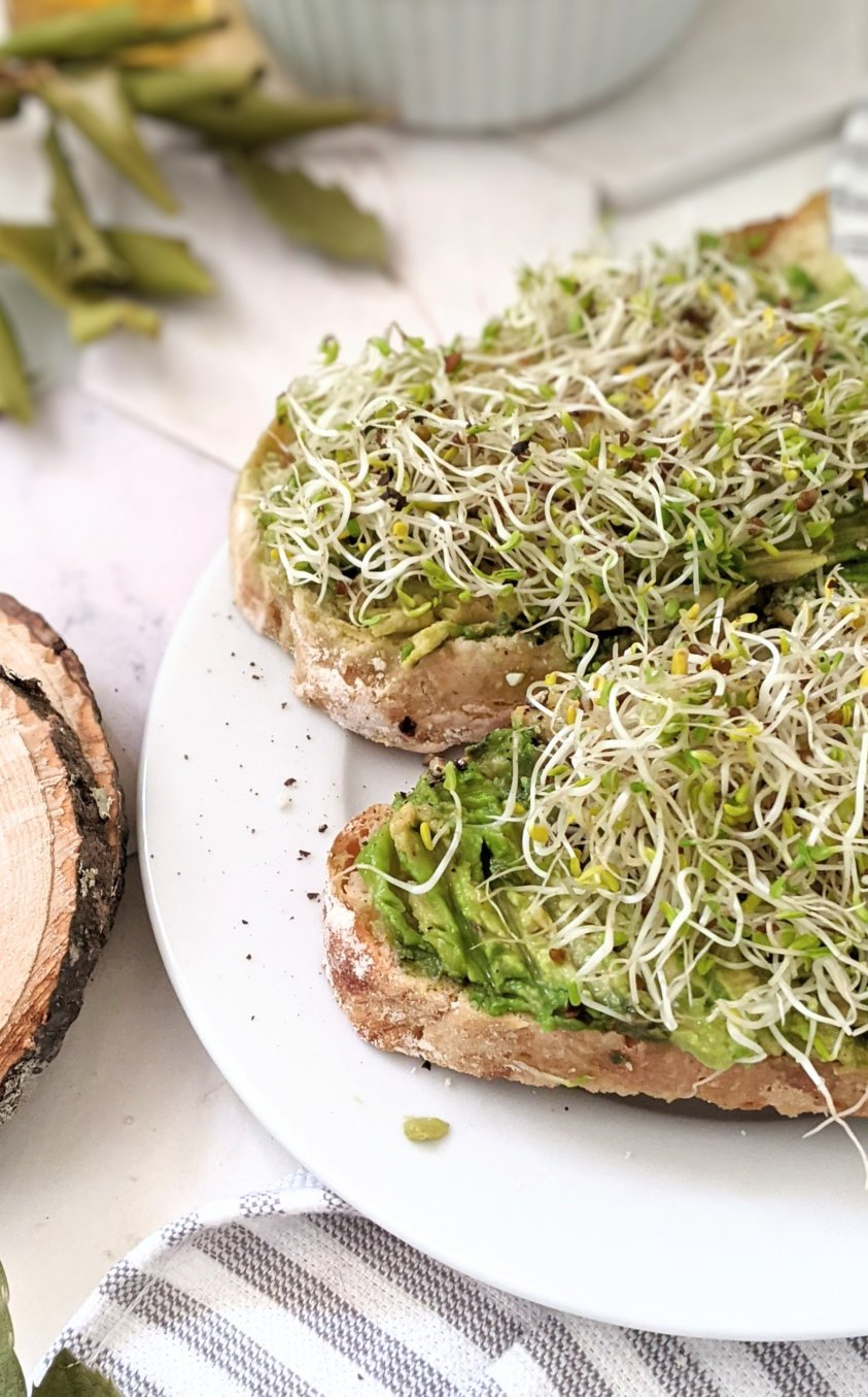 avocado sprouts toast recipe vegan gluten free avocado sprout toast recipes with sprouts for breakfast or brunch healthy avocado toast with montreal steak spice