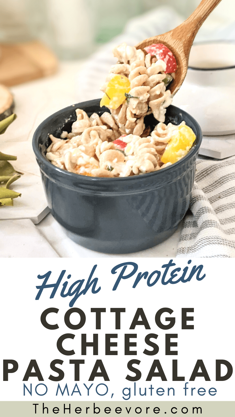 high protein cheese pasta salad recipe creamy pasta salads without mayo no mayonnaise pasta salads for summer