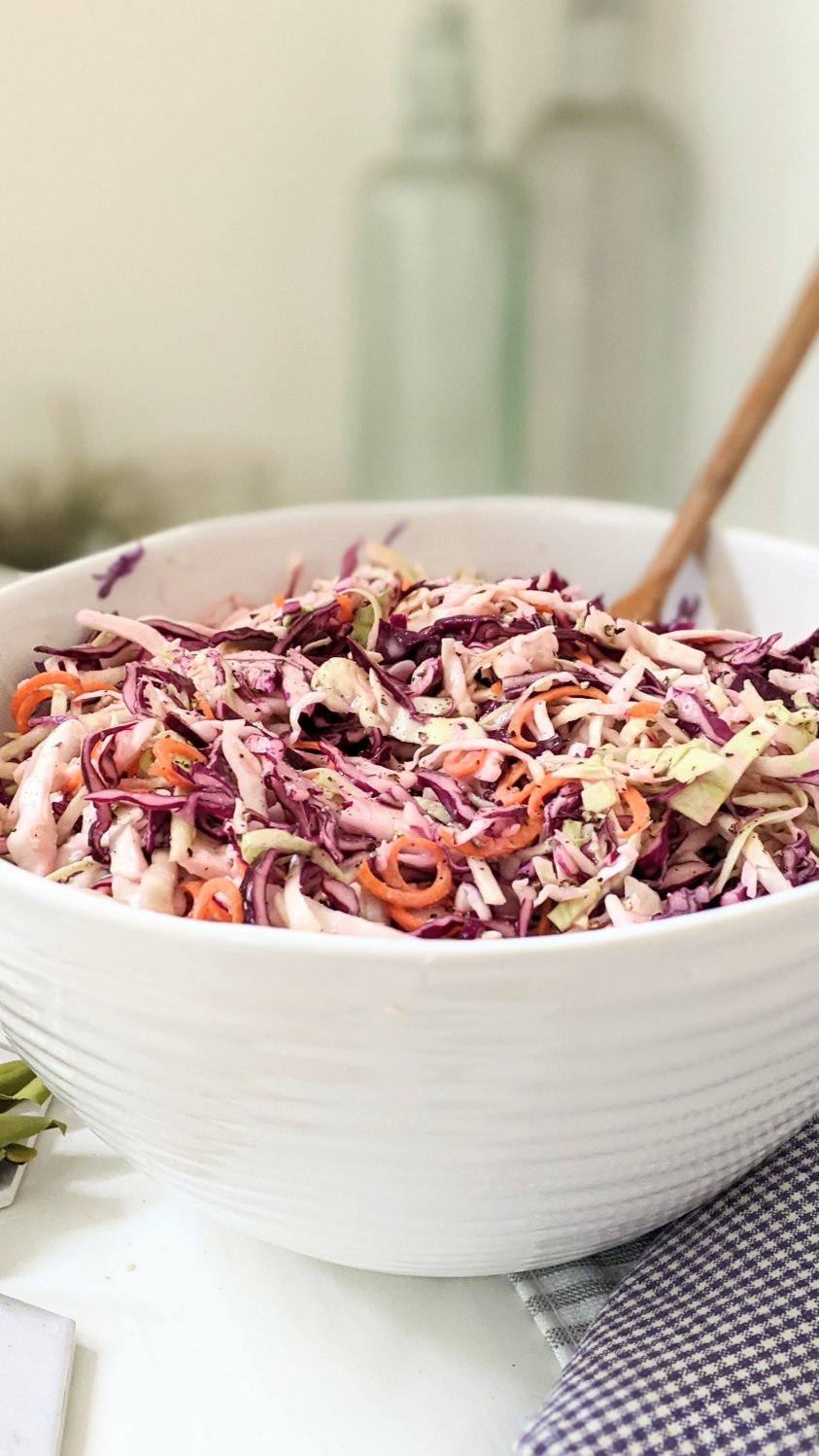 dairy free coleslaw recipe with red cabbage salad for summer bbq picnic side dishes gluten free potluck salads healthy recipes with red cabbage coleslaw