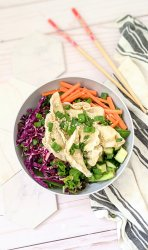 pot sticker salad recipe vegan gluten free salad with gyoza recipes healthy plant based pot sticker dumpling salad with sesame lime dressing