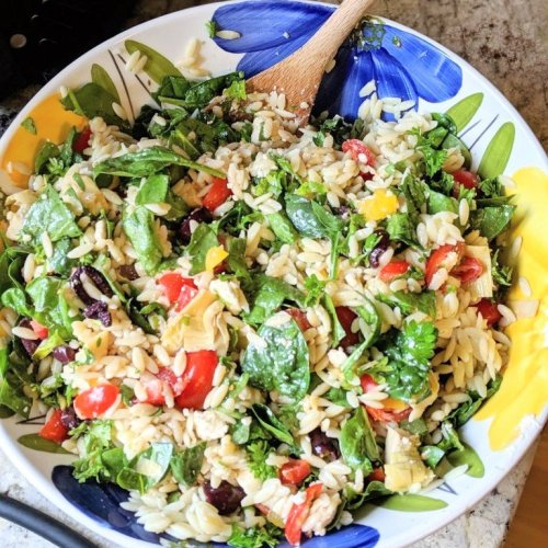 greek orzo salad recipe with red wine vinegar pasta salad best pasta salad recipe ever potluck bbq
