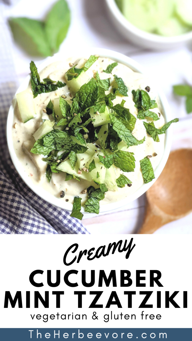 blender mint tzatziki recipe without dill can i make tzatziki sauce with mint instead of dill recipes for non traditional tzatziki with greek yogurt and fresh mint leaves can be vegan and dairy free
