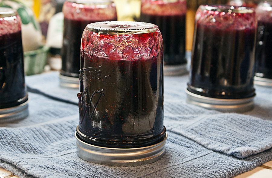 Homemade Blueberry Jam from The Heritage Cook; jars upside down on counter creating a tight seal