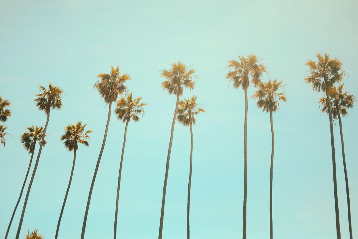 10 Top Modeling Agencies in Los Angeles
