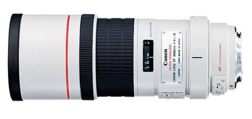 Canon EF 300 mm f/4L Telephoto