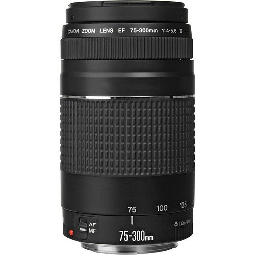 Canon 75-300 mm Zoom Lens