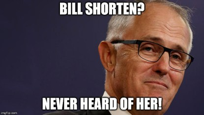 shorten never heard of her