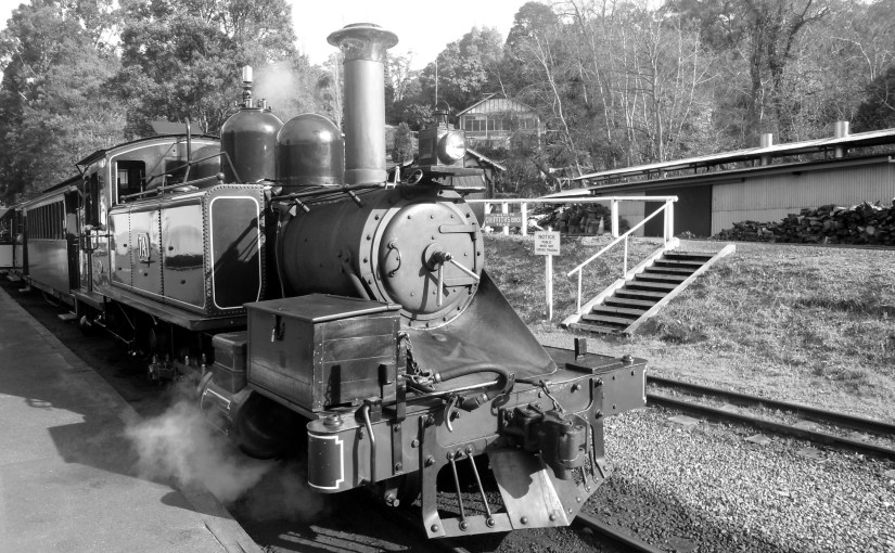 Chromatic Outlook : Puffing Billy Steam Train