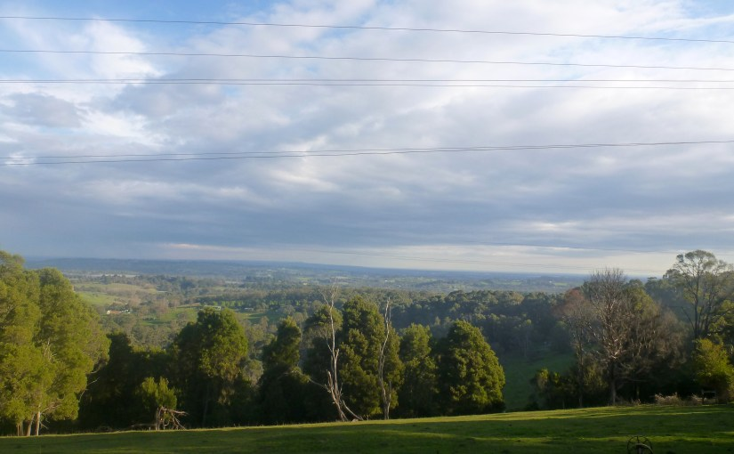 Precious Moment In The Mountain : Dandenong Ranges