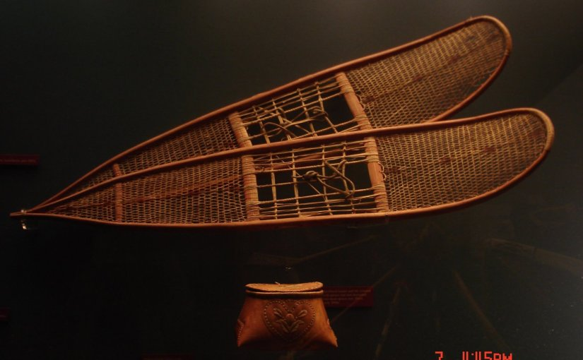 Discovery : Snow Shoe (From Royal Alberta Museum)