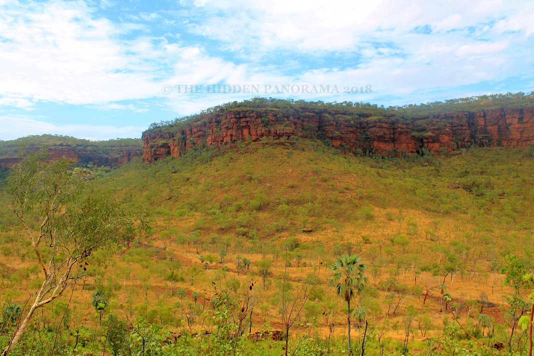 """Judbarra (Gregory) National Park - """"One of the Most Prolific Sites in Australia"""""""