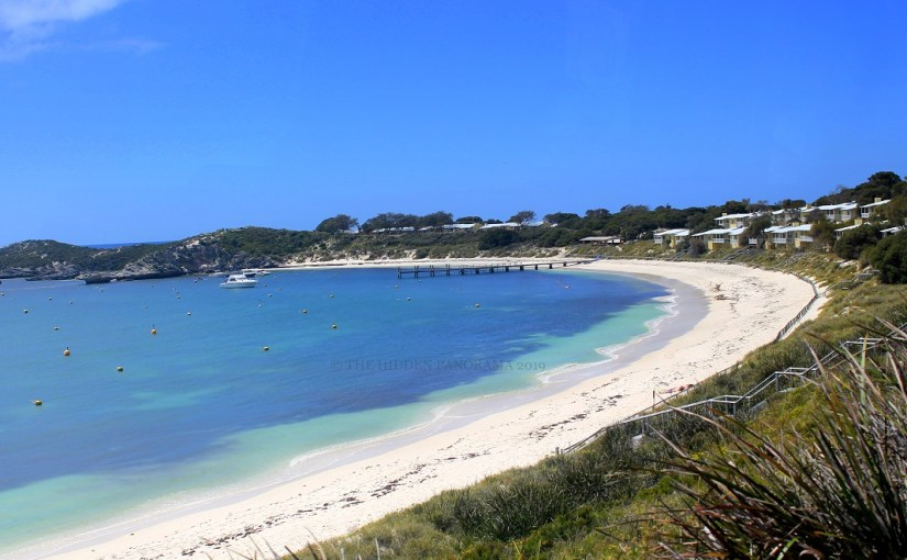 Top Destinations and Attractions – Rottnest Island Traveler's Panorama Guide