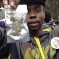 420_hippiehill