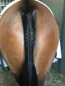 Tail braid