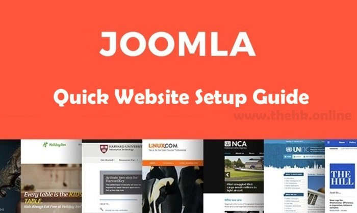 joomla website setup