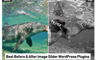 Top 5 Before & After Image Slider WordPress Plugins