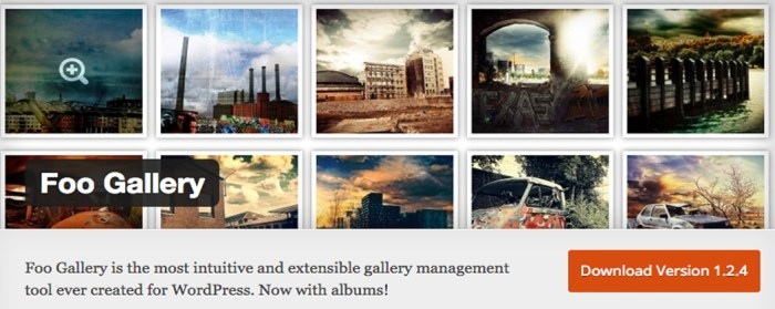 Best Gallery Plugins for WordPress
