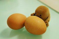 egg nom