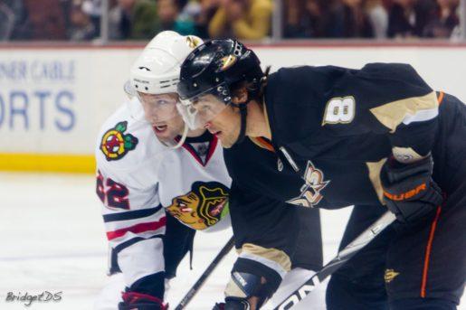 Teemu Selanne confirmed this is his last NHL season.(BridgetDS/Flickr)