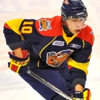 Stephen Harper hockey