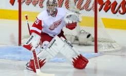 Detroit's Gigantic Goaltender Controversy