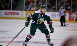 Top 5 Sharks Prospects