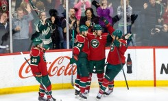 The Minnesota Wild Franchise Four
