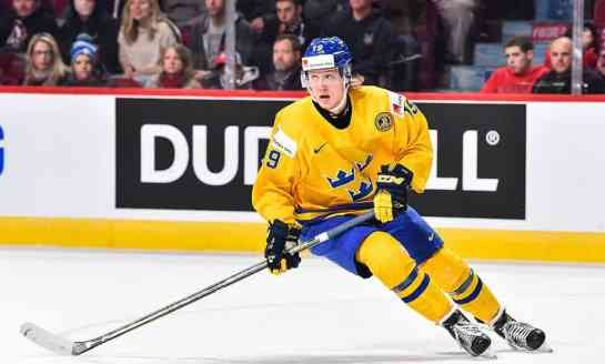 Sabres Future is More than Just Swede Nothings