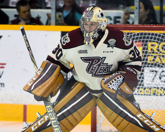Dylan Wells, Peterborough Petes, OHL