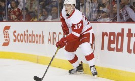 Red Wings' Roster Hopefuls for 2017-18