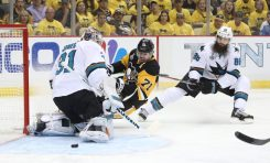 San Jose Sharks 2015-16 Review: Goalies