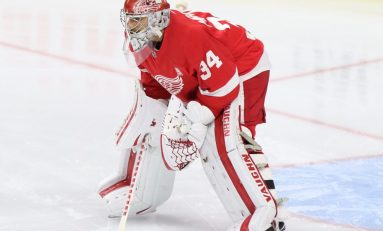 Petr Mrazek Staying With Red Wings