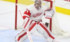 Detroit Red Wings: Top 25 Under 25