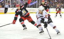 Streaking Monsters Set Sight on AHL Playoffs