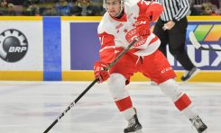 OHL Power Rankings: Sault Ste. Marie Greyhounds Winning the Race