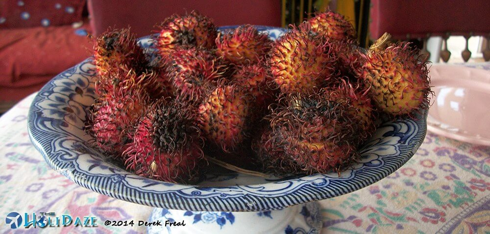 Rambutan in Costa Rica but natively from Indonesia, making it another one of the amazing, weird and exotic fruits of Asia