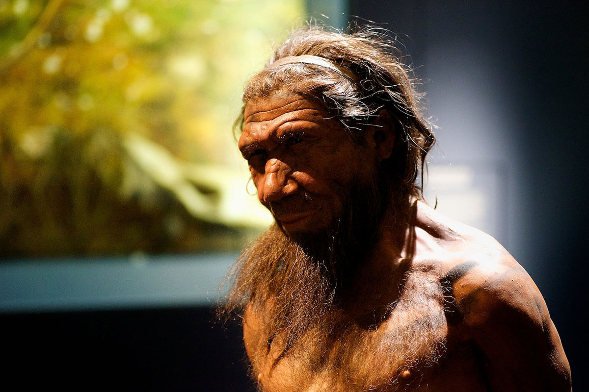 Looking for quirky museums? Check out the unique and offbeat Neanderthal Museum in Dusseldorf, Germany