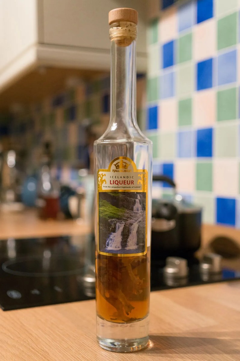 Fjallagrasa Moss Schnapps, one of the unique types of alcohol only found in Iceland