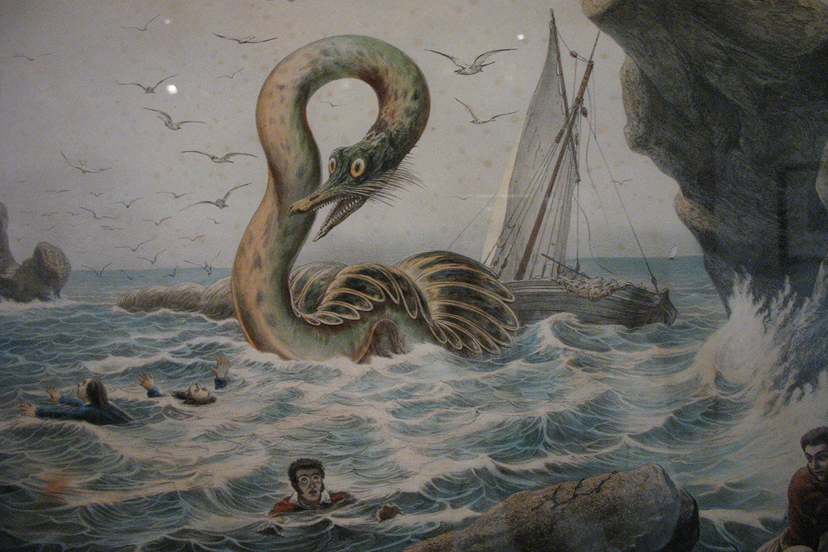 Skrímslasetrið, otherwise known as the Icelandic Sea Monster Museum, another intriguing way to experience Iceland off the beaten path