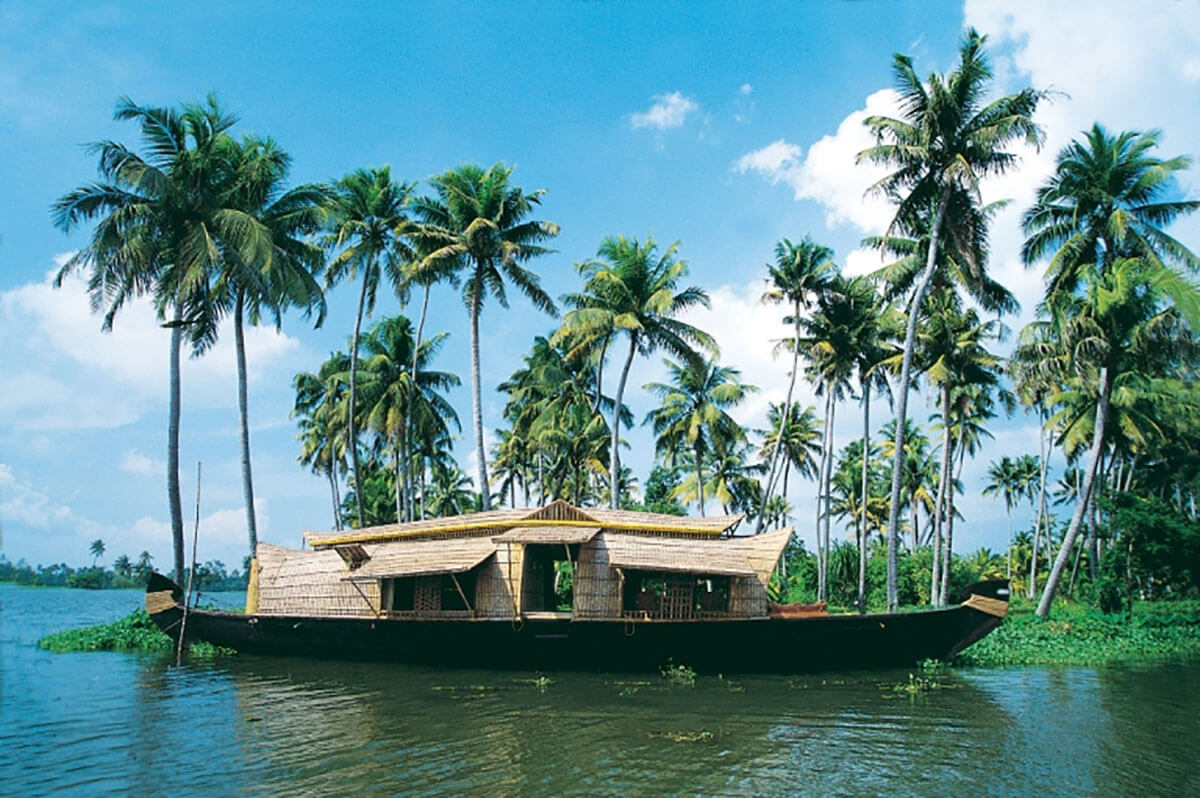 Look how green the Kerala backwaters are!